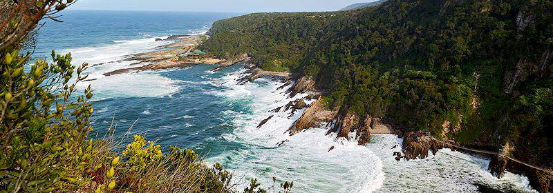 A striking view of the Storms River Gorge in the Tsitsikamma National Park.