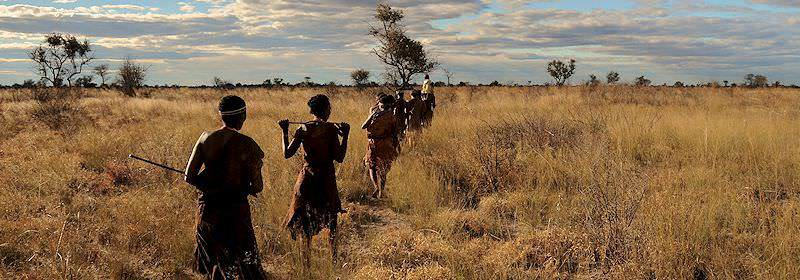The San bushmen wander through the wilderness of the Namib.