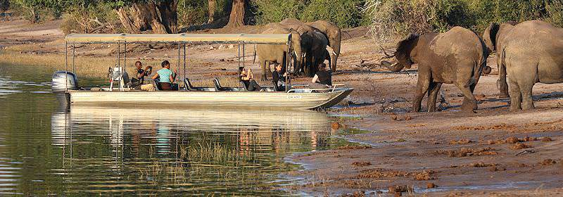 A boat beaches close to elephants on the banks of the Chobe River.