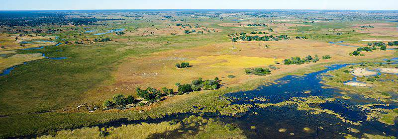 A striking aerial view of the Okavango Delta.