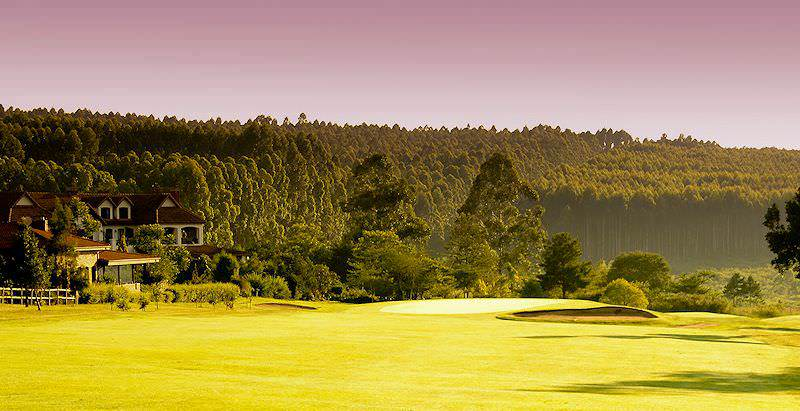 The pine forests of Mpumalanga surround the White River County Club.