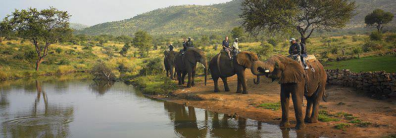 Get up close and personal with the giants of African on an elephant-back safari.