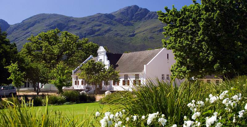 The Cape winelands feature on the 21 Day Romantic Getaway Honeymoon.