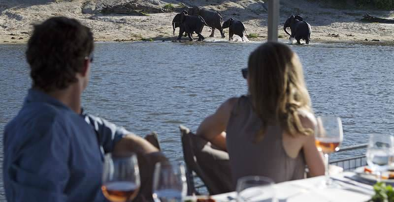 Guests on a 4 Day Chobe Safari observe elephants from the Chobe River.