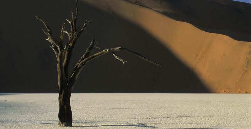 Visit Deadvlei during the 7 Day Southern Namibia Overland Safari with African Sky.