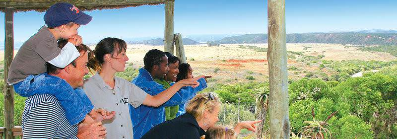 A family on safari enjoy spectacular views across the wilderness.