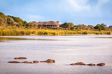 Hippos bask in the Sabie River in front of Lower Sabie Rest Camp.
