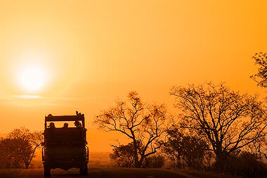 A sunset game drive in the Kruger National Park.