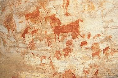 Rock art paintings in Southern Africa.