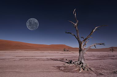 The desert landscape of Sossusvlei in Namibia