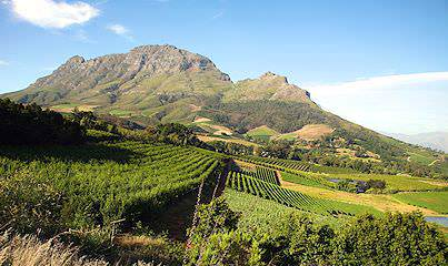 Majestic mountain scenery in the Cape winelands.