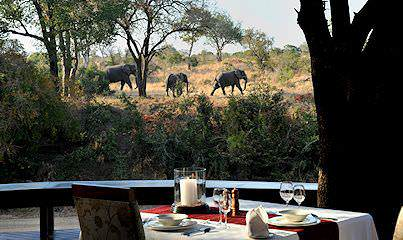 Elephants spotted from Imbali Safari Lodge in the Kruger National Park.